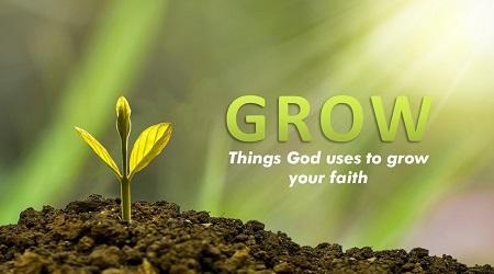 Next Steps Grow Course